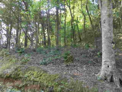 $32,500 Andalusia, Nice large lot with view of Gantt Lake.