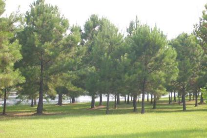 $46,800 Andalusia, BEAUTIFUL LEVEL LOTS WITH WATERFRONTS OF 83' AND