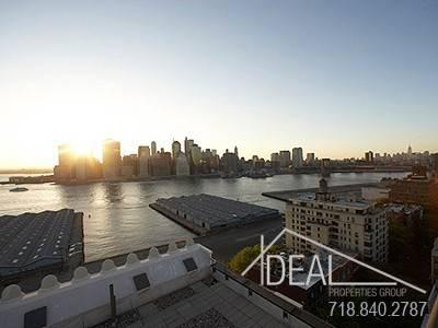 Luxury Two BR in Brooklyn Heights, with Harbor Views, Pets OK!