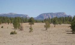 Build your dream home on this forested and meadow covered scenic lot with gorgeous views of hermits peak and surrounding mountains.