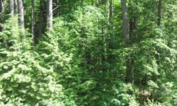 If you love privacy, nature and wildlife you will want to see this land located on a quiet country road between Lake George & Saratoga. There are four separate deeded lots being sold together that may have some timber value. Give us a call and we would be