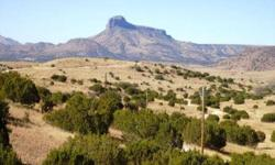 This beautiful piece of land is located in the South Double Diamond Ranch on 14.24 acres with a private water well. The property offersoutstandingviews of Cathedral Mountain with beautiful sunsets and peaceful living. A must see to appreciate!! Listing
