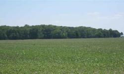 15 wooded acres down a country lane. Great location to build your dream home. Sit back and enjoy the views and wildlife that this magnificent country setting offers. Zoned agricultural but is a buildable lot for a single family home. Road back to the 1