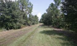 26.9 acres lot in Country World Village near Champions Gate Blvd. Green Swamp Area ZONED RURAL. 20 minutes to Disney World Parks and 35 minutes to Orlando International Airport & Downtown Orlando. Enjoy living in the country not to far from the city. Call