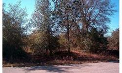 Great Opportunity, Last Available Lot in Established Subdivision, Single Family Homes only, A lot of New construction in the area. High & Dry, Nor Flood Insurance Required. Easy Access to Suncoast Parkway. Drastically Reduced!!! Must Sell, Bring Offers!