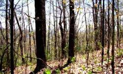This beautiful 22 acres with spectacular views, rolling mountain ridge, backs up to USFS land. This land has wonderful potential.Listing originally posted at http