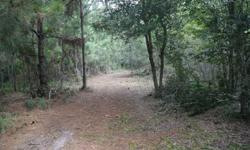 26.6 acres lot in Country World Village near Champions Gate Blvd. Green Swamp Area ZONED RURAL. 20 minutes to Disney World Parks and 35 minutes to Orlando International Airport & Downtown Orlando. Enjoy living in the country not to far from the city. Call