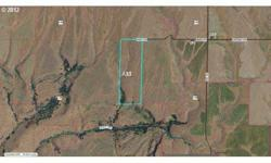 116 acres of room to roam with a few trees in sw corner and creek, level with topo changes to make unique property. Listing originally posted at http