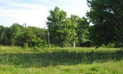 Looking for a private lot for a home or mobile home. Septic tank and temporary power pole in place. 2 outbuildings are currently on the property .78 acres on cul-de-sac road. Very private. Elementary school is the new Chastain Rd. Elementary. Owner will