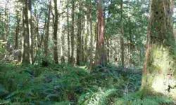 Ravensdale 6.75 acres (approximately. 898' x 651').