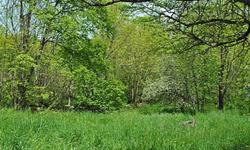 *South Kortright School District *Wooded *Paved town road *Electric on road *Gently sloped Plant your roots on this parcel of 3 acres in the town of Kortright (South Kortright School District). The land has a gentle slope and is easily accessed from the