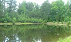 Almost 37 acres in Lugoff, SC perfect for a hunt club or country retreat. The property offers a 2 acre pond and a 2 bedroom cabin. Live in the cabin while you build, or keep it as a little weekend getaway. Enjoy the country while being only 7 miles from