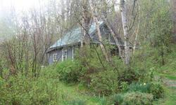 Cabin, guest cabin, travel trailer, gardens, fruit trees, berries, hiking trails & more. Fully self-sufficient living with primary frontage on the Pend Oreille River. Spring water, dug well, electricity, propane & generator backup, wood stove and TOTAL