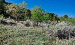 Raw land on upper canyon road with an active acequia running through it.