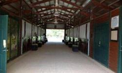 -5 acre beaautiful equestrian facility Belle Meade Ranch. Prime location adjacent to Picayune Strand forest with miles of trails, 10 stalls, 12x12 barn built in 2008, riding arena 90x200, sprinklers, round pen, updated modular home, AC Tack and Feed