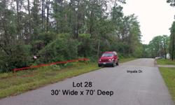 2,100 sq ft Vacant Land offered at $1,500 Lot Size 2,100 sqft DESCRIPTIONImpala Woods Section 2, Block 21, Lot 28 Impala Dr. - paved road frontage. Great location, close to the subdivision pool. Lot size is 30' wide x 70' deep. Water, sewer and electric