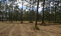 70 +/- beautiful ac. in the Town of Persion, Volusia County Fl. 45 min from downtown Daytona on the edge of Ocala National Forest. Lots of wildlife, peaceful and secluded,perfect for hunting ,camping or just getting away. Plenty of room for you Equestrian