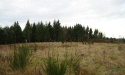 Fabulous private location for this just shy 80 acre parcel. Utilities are at site. There is a private pond on property too. This is an unbelieveable location to build your dream home!