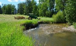 80 ACRE WATERFRONT FARM - Ideal Development. Orchard, Farm, Vineyard, Ranch land sub-irrigated with 1/2 mile of Creek running through property. Currently Hay Farm in Ag status with up to 3 cuttings per season. Farm Equipment Negotiable in Price.
