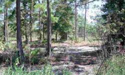 2 ACRES CLEARED AND READY FOR YOUR HOME. MOBILE HOMES ARE ALLOWED. CLOSE TO SHOPPING, SCHOOLS AND REC. PARK. MORE LAND AVAILABLE.Listing originally posted at http