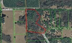 Gorgeous 19+ acres in exclusive Pasco Trails Equestrian Community. Estate homes with large yards and wooded areas. Lot has picturesque cypress pond in front of property near street . Deer and Wild Turkey are frequently seen. A little bit of country in a