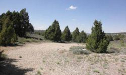 This 2.20 ac parcel sits in the middle of Long Valley Estate Subdivision and overlooks the valley. Juniper and Pinion Pine trees dot this lot adding vegetation and beauty. A County approved water system has been brought to the area and is available to buy