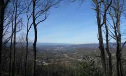 The premiere lot on chestnut mountain!!! End of road privacy!!!