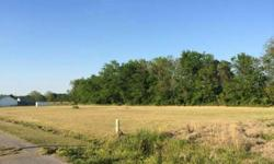 Two great lots at a terrific price! .78 Acres. Located in Country Meadow subdivision, right off of Hwy. 93 between Sunset and Cankton. This subdivision is small and quaint with blacktop road access and beautiful homes. Come build your dream home!
