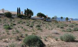 Huge lot in Chaparral Estates Subdivision with so much potential. If you are looking for a great lot with no HOA's, this lot is for you. Choose your own builder to construct the home of your dreams on 1.21 acres. This size residential lot is almost