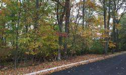 The lots at 111 Armour Road are both 0.35 acre lots located on the corner of Armour Road and Kilmer Road in beautiful Mahwah NJ, 07430. Both lots are the perfect pieces of property for acquisition by a residential developer or for private buyers looking