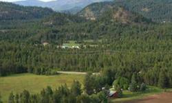 Heaven on earth! View of jumpoff joe mt, gorgeous summer days, pastures, timber, pond, and a wildlife paradise. Jim Palmer Jr. has this 3 bedrooms / 2 bathroom property available at 3466 Highway 395 South in Loon Lake for $325000.00. Please call (509)