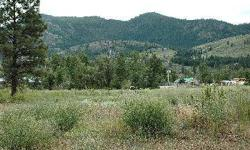 One of the most affordable building parcels in the Methow Valley! Private Twisp in-town location with nice views of Mt. McClure. Water, power and sewer on parcel or very close. From Highway 20, take Burton St, left on Riverside Ave - and drive to the end