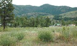 One of the most affordable building parcels in the Methow Valley! Private Twisp in-town location with nice views of Mt. McClure. Water, power and sewer on parcel or very close.From Highway 20, take Burton St, left on Riverside Ave - and drive to the end