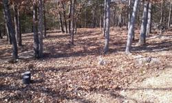 We have a total of three lots for sale in Mountain Home. They are only sold together. The Corps line is behind the propery so its like having an additional 1+acres of land that you can play on. Heres what I like about the propery. It its in a really nice