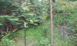 This will buy you 10 private acres with a year round creek at your front door. This is recreational land only, it is undeveloped. It is off the grid, but only a mile if you ever wanted to hook up power to the land. It is located one mile down a private