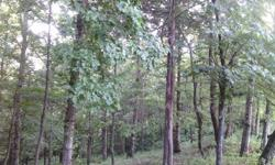 78 Acres of wooded timber located at Middle Tennessee by Center Hill Lake off Interstate Highway 40.