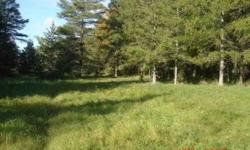 20 Aces for sale in Upper Peninsula, Daggett Michigan,Great for Hunting or possible building site, Aboundant farmland and cedar trees, three tree stands and one enclosed hunting blind, one third is clear and the rest is wooded with pine, oak and ceder