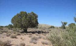 This is a choice lot in the cedar hills ranches. 38.45 acres with trees and incredible views.