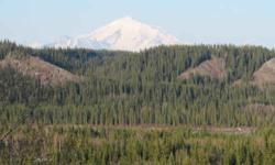 AWESOME Bluff View lot with easy access, power and phone nearby, Virgin land with Aspen and White Spruce, Gravel soils. 1 of the best locations in Copper Basin.