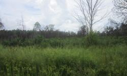 12 acres 2 side by side tracks of 6 acres each piece has its own id.. not cleared thin trees and palmettos zoned for res/comm. No rear neighbors. GET deal hard to find land..Located in Frostproof, Florida..email me or call me @ 863 307 2957