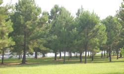 BEAUTIFUL LEVEL LOTS WITH WATERFRONTS OF 83' AND SOME HAVE MORE. LOTS 1 HAS 148' OF WATERFRONT.LOTS ARE CLEARED AND READY TO BUILD THAT COTTAGE OR CABIN FOR LAKE FRONT LIVING. BUY 4 OR MORE LOTS AND GET A MUCH LOWER PRICE. OWNER FINANCING WITH 10% DOWN