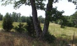 Cattle or horse ranch, pasture or excellent opportunity for development or industrial. Stunningly beautiful rolling piece of prime Texas property. Lots of good lookin' pasture. Inviting wooded pond area. Great frontage on excellent road just 4 miles from