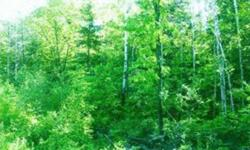 20 heavily wooded acres just north of Bemidji. Mostly high ground. Borders the Buena Vista State Forest. Excellent hunting! Many great fishing lakes within minutes. Nice building sites. Fish, hunt, snowmobile, 4 wheel, or just relax. Perfect 20 acres!!!