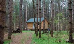 This fully finished 16 x 20? cabin is located on 5.7 wooded acres on a quiet, country road in Amboy, New York. The tall, red pines on the lot create a picture perfect setting. The cabin features a great room, loft and bathroom area and is located in an