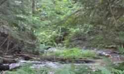 Almost five acres along the creek. Plenty of wildlife and only half of mile away from the State Park. Great for horse riding and snowmobiling. Additional seven acres w/cabin available to purchase with this property.Listing originally posted at http