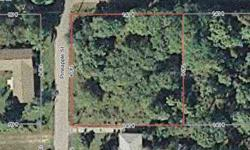 Build your dream home on this corner lot with .448 acres of lush tropical landscape located in charming Old Englewood. Imagine living within walking distance to Lemon Bay Park with all the natural beauty our area has. Watch the dolphins, take nature walks