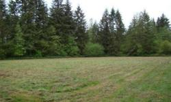 Enjoy the peacefulness of country living yet close to the conveniences of town. It's a short 10-15 minute commute north to Chehalis/Centralia or south to Winlock/Toledo. This level 5 acre parcel has been partially cleared creating an ideal building site.