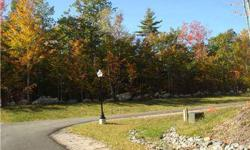 Wonderful land to build a new home! Use your builder or our builder. 62 acres of common land with hiking trails. Nice level wooded lots in a premier subdivision. Only minutes to Windham just across from Panther Pond.
