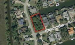 Bank approved Short Sale! Appraised at 55K in July 2012. Drive By, see this gorgeous Salt Water Canal lot. Build your Florida dream..................don't forget to bring the boat! SHORT SALE LENDER APPROVAL REQUIRED. Commision will be 50% of lender
