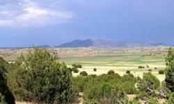 Beautiful 36.91 acre lot just 60 min from Grand Canyon Park. All of the eastern portion of the lot borders Prescott National Forest and the north section of the lot borders State Trust land, both protected lands. This is a premium lot. For sale by owner.